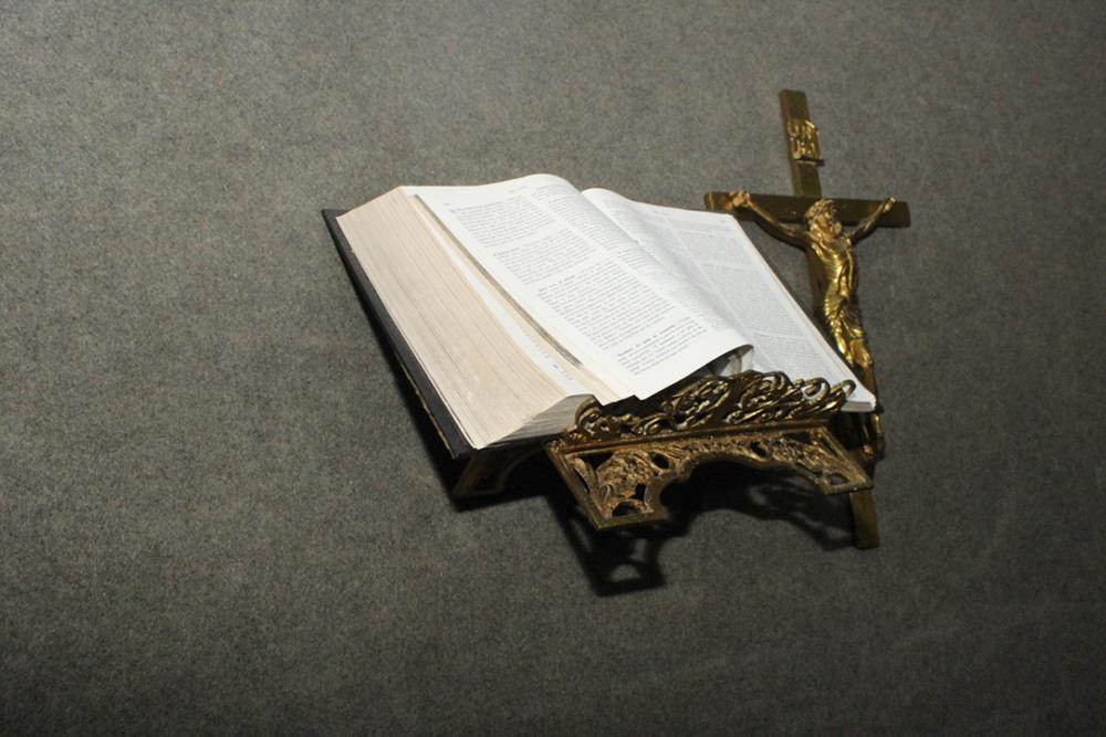 Biblia plenria cmara